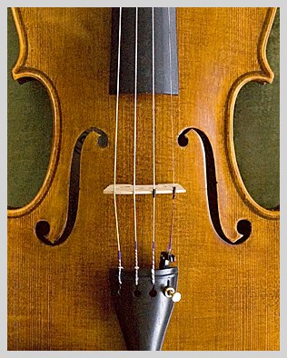 detail of the front of a violin